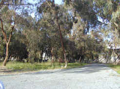 Larnaca did boast the wonderful beach side forest park campsite.