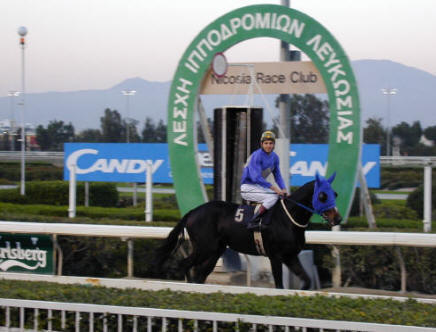 Horse Racing in Cyprus at The Nicosia Race Course