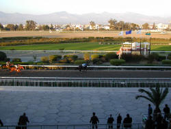 During 1997 the Racecourse and its buildings underwent an extensive program of renovation and upgrading. It is a real pleasure to spend a day there enjoying the glorious spectacle of racing in picturesque surroundings